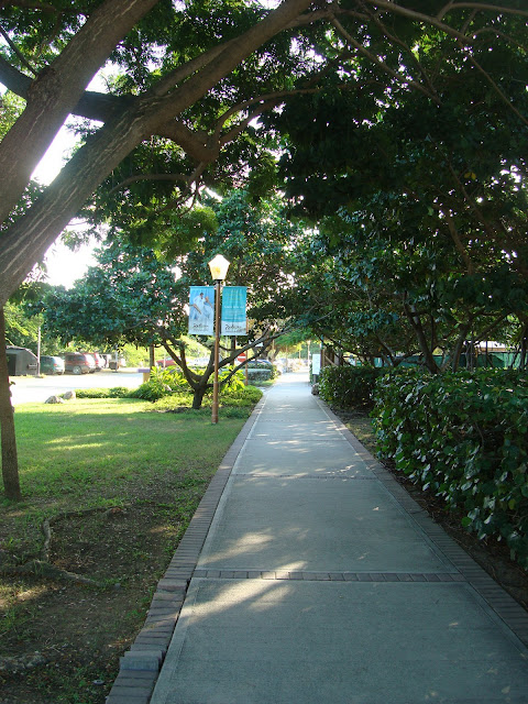Pathway in front of the Radisson and Westin Hotels