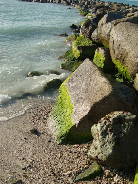 Side or rocks with moss with water hitting them