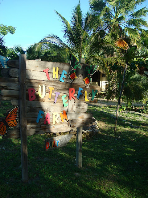 Sign for The Butterfly Farm