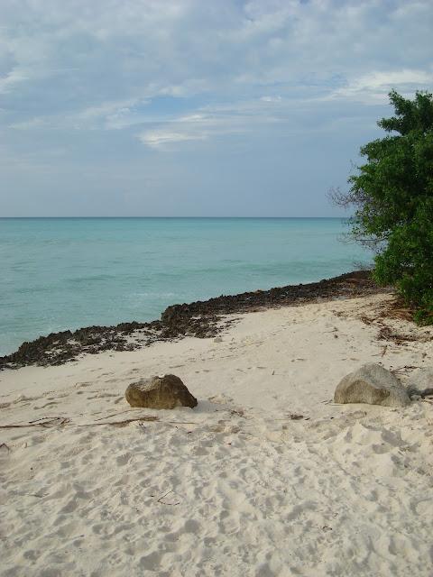 White sand beach with ocean