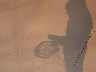 shadow of a girl making a basket out of grape vines