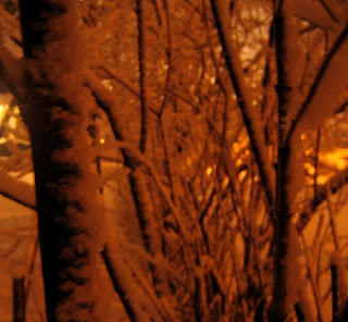 Sodium Vapor Light on Snow