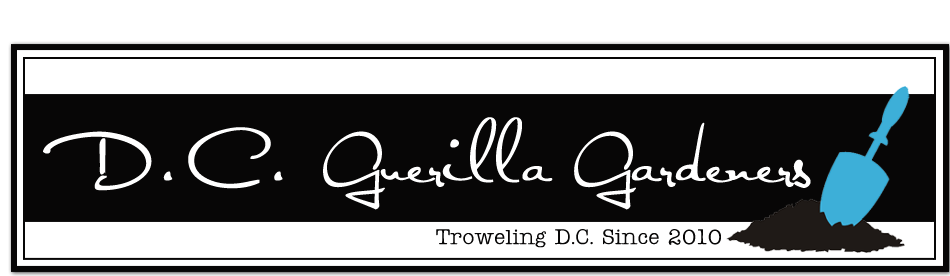 D.C. Guerilla Gardeners