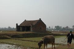 Quán (nhà nghỉ chân) giữa đồng