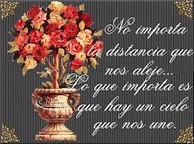 NO IMPORTA LA DISTANCIA...