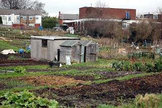 view of allotments