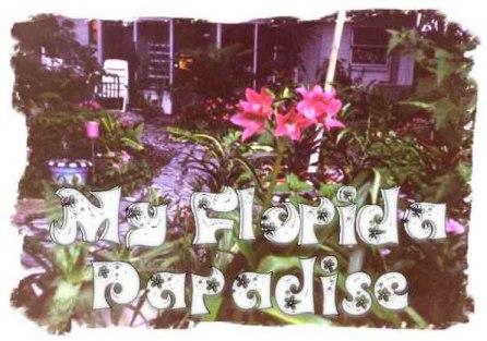 My Florida Paradise