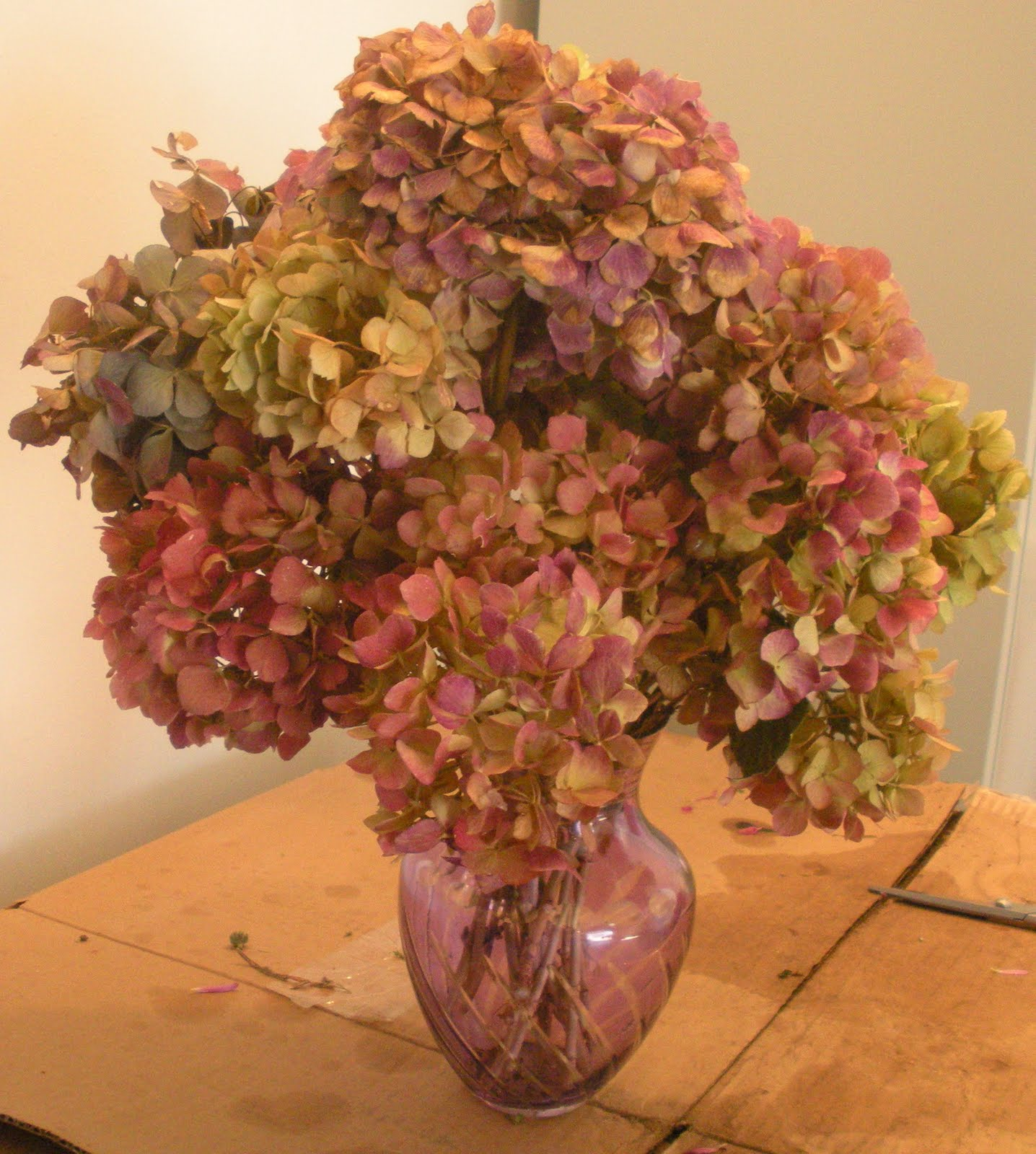 Dried Hydrangea Arrangements: Sowing The Seeds