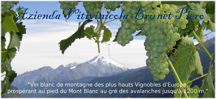 azienda vitivinicola brunet piero