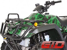 GIO Bear 300cc 4x4 ATV Quad Four Wheeler 4WD