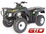 2009 GIO Bad Boy 250cc Utility ATV Quad