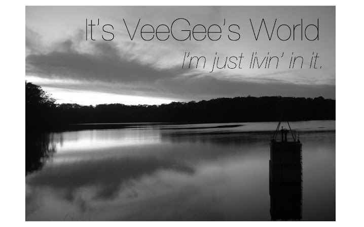 It's VeeGee's World