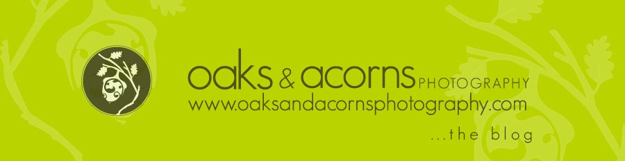oaks & acorns photography... the blog