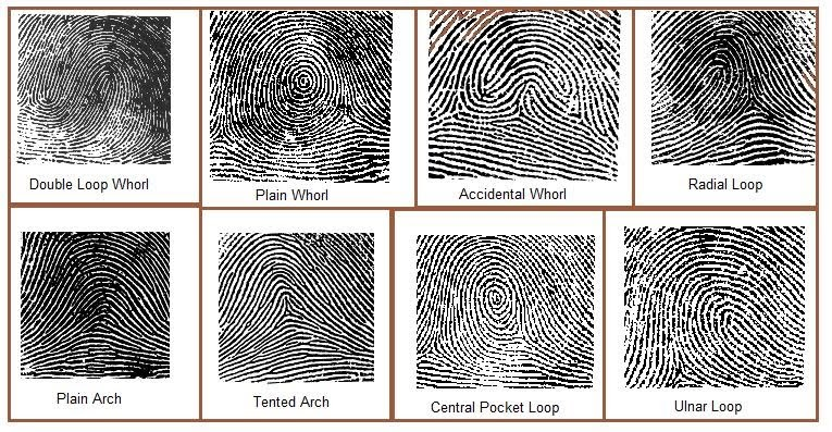 Forensics: Types of Fingerprints