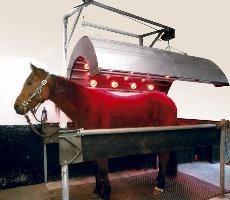 Solarium dla koni