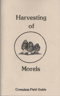 Harvesting Morels by Willis, Bill & Melody, Willis, Bill & Melody