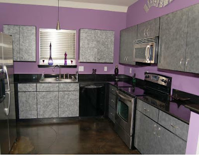 Contemporary Modern Kitchen Purple Color Design Ideas