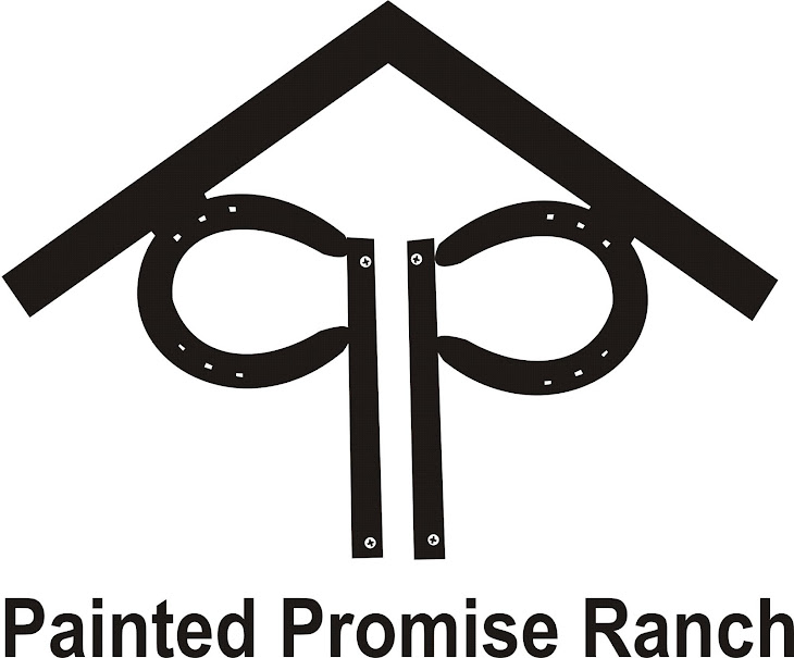 Painted Promise Ranch