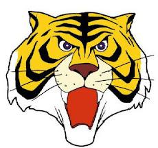 tiger man  - uomo tigre - タイガー・マスク, Taigā Masuku
