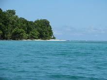 Renato's inmobiliary ofrece: Hermosos lotes caribeños a bajo costo. Colaborá con nosotros.