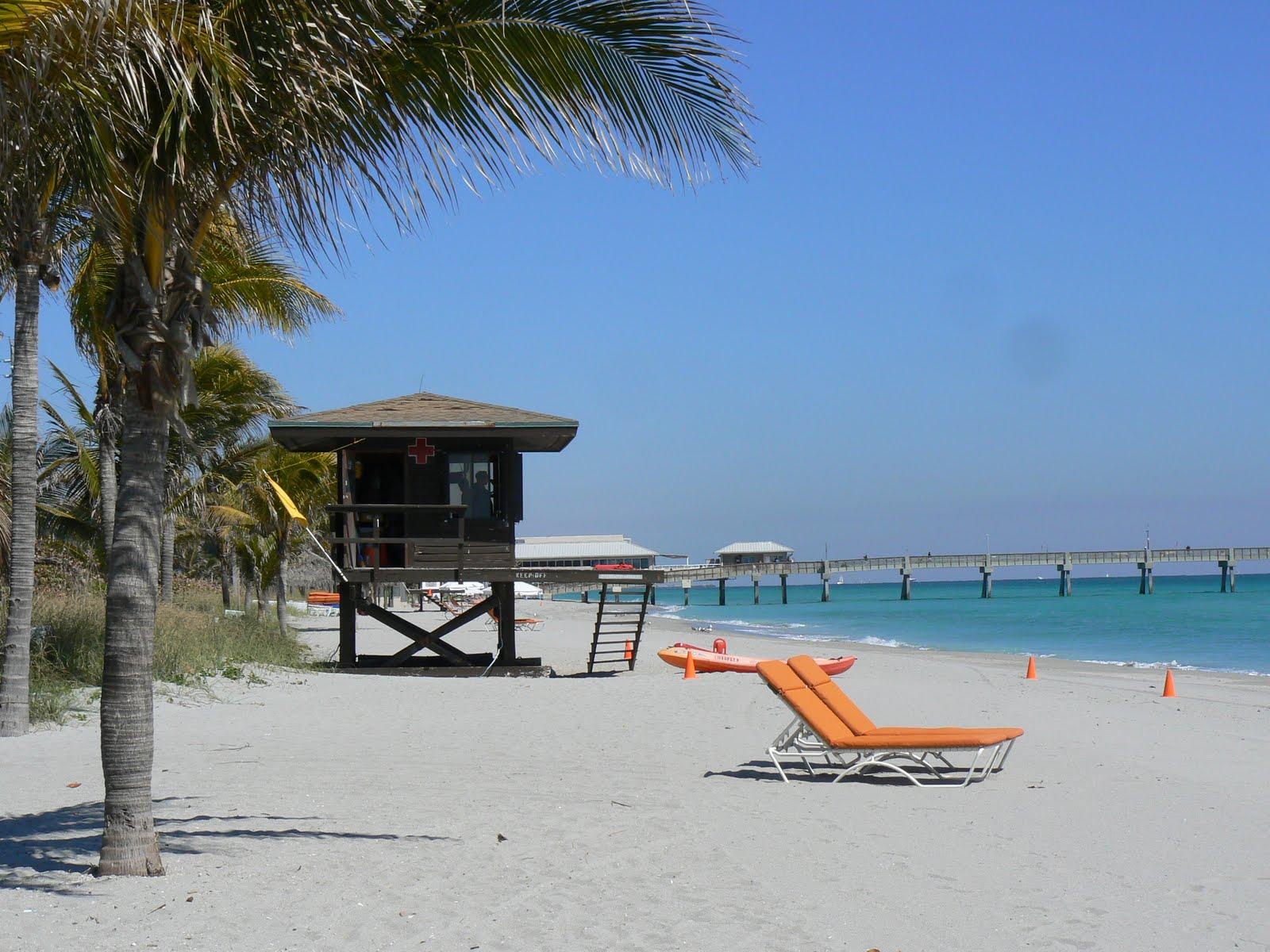 Florida free frugal dania fishing pier dania beach for Hollywood florida fishing