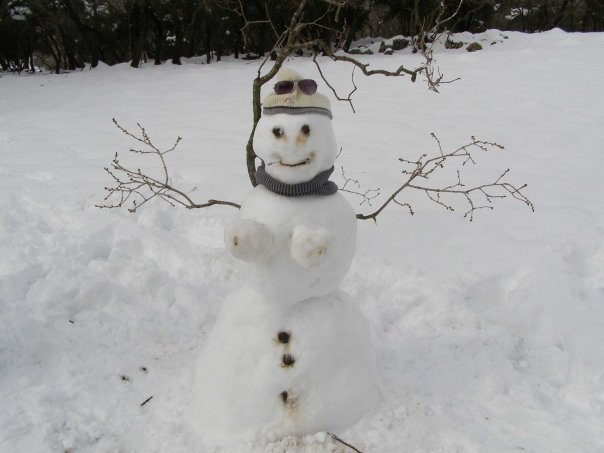 [snowman_chick.jpg]