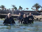 Inmersiones desde la Playa