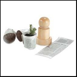 how to make seed starter pots from newspaper