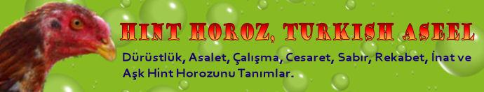 Hint Horozu