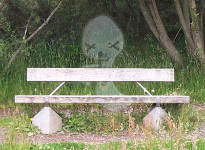 Photograph of bench... and Ghost!