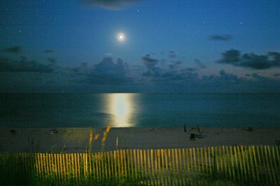 [Moon_Gulf_Cape_San_Blas_Florida_Beachfront.jpg]
