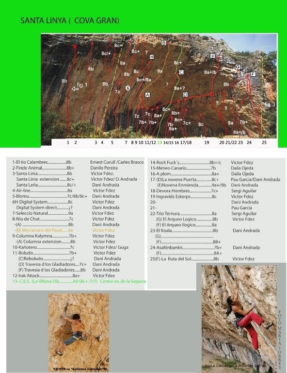 Halimbawa ng book report sa english
