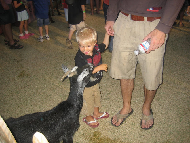 A little bit scared of the goat!