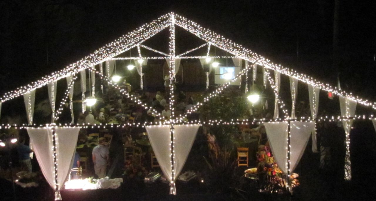 fresh ideas : under a canopy of lights, a mid summer reception