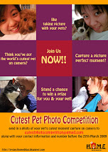 Cutest Pet Photo Competition!