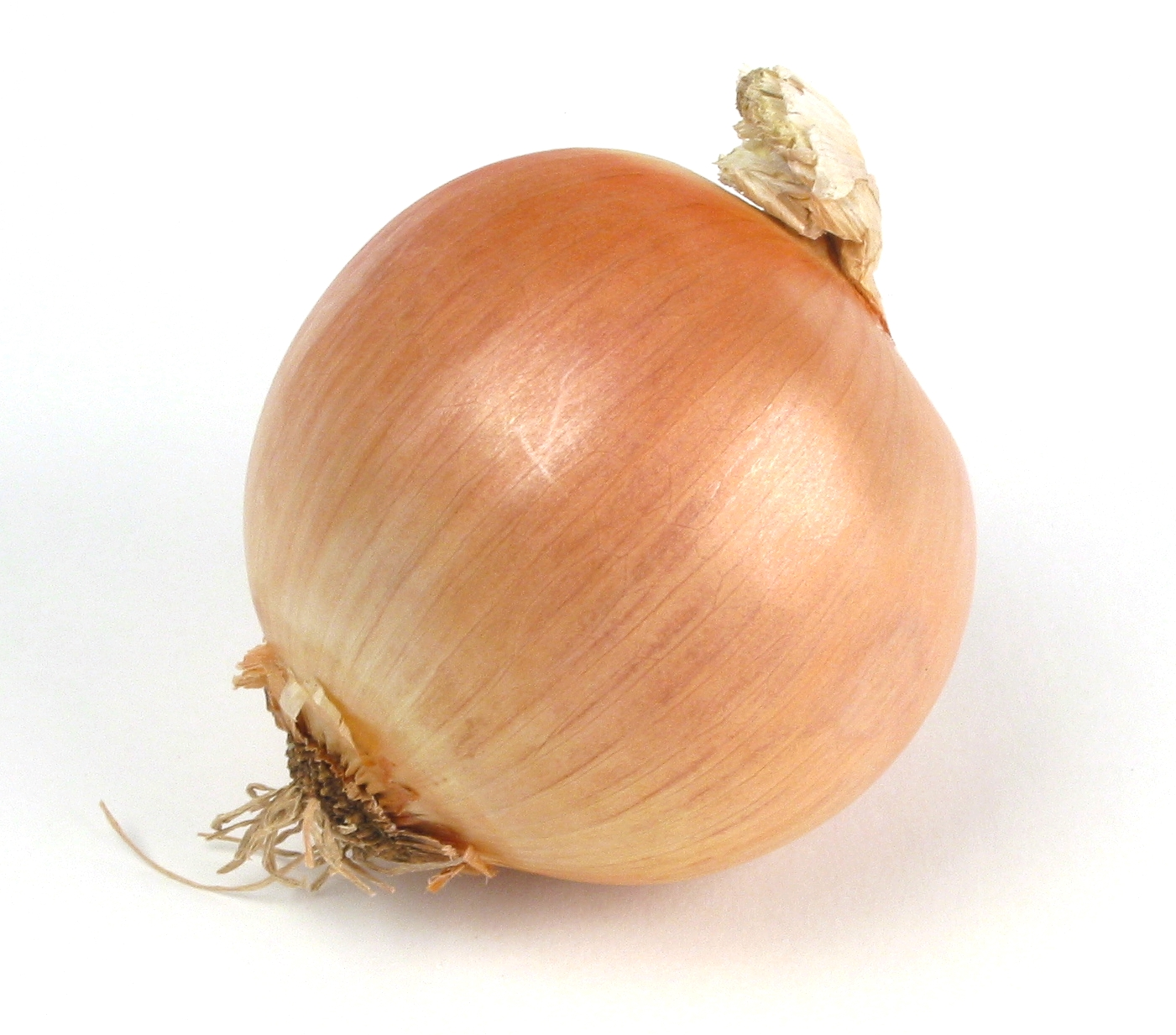 Dear Onion