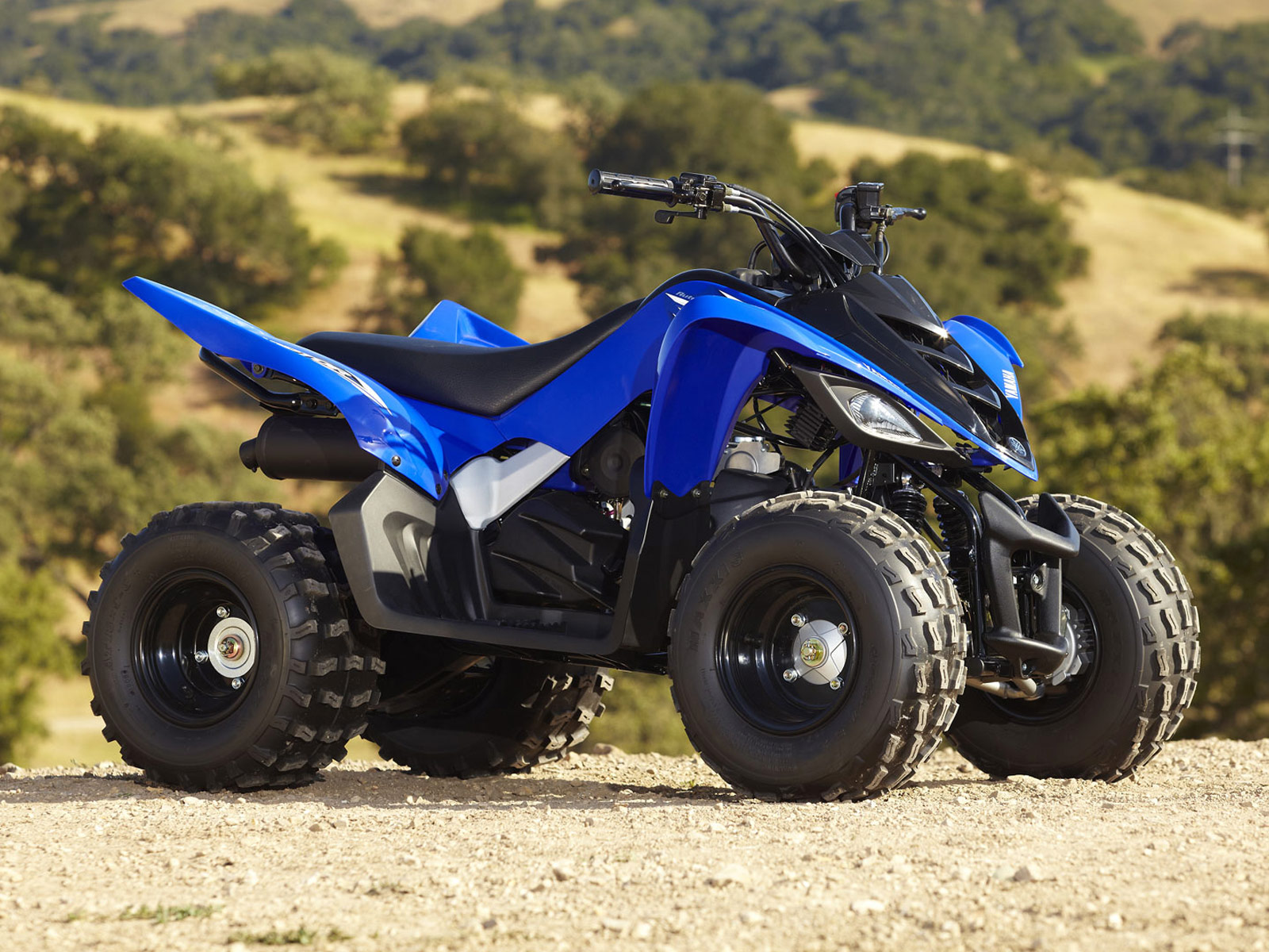 Yamaha Youth Atv
