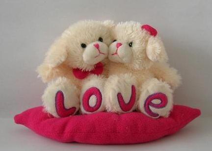 Blog de sara peluches de amor - Peluches con foto ...
