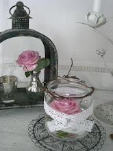 Älskar rosor...