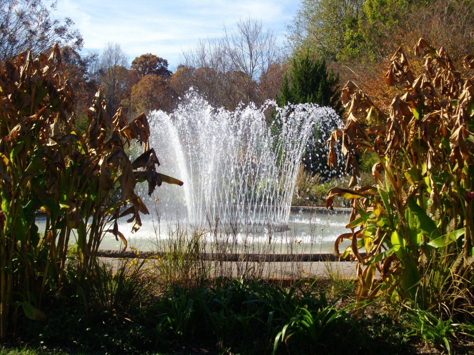 Sherri 39 S Jubilee Pictures Of The Botanical Garden Visit