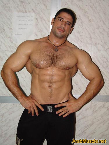 sexy muscular egyptian men