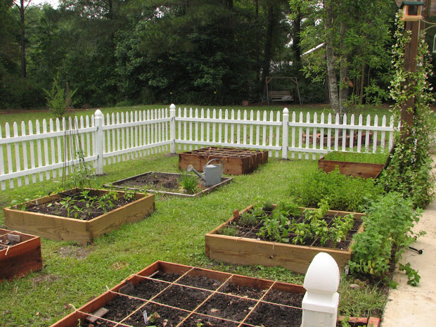 White Picket Fence and Gardens