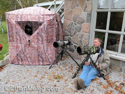 ethan meleg nature photography blog fall colors sigma. Black Bedroom Furniture Sets. Home Design Ideas