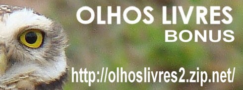OLHOS LIVRES - BÔNUS