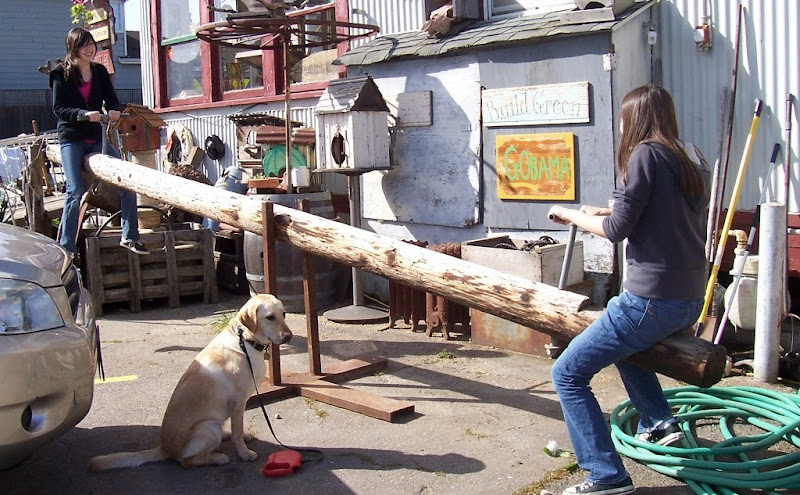 a rustic looking teeter totter made out of a 12 foot long wooden log, my daughters are each on one end smiling, cabana sits on the ground in front of the teeter totter, she looks like she's zoning out, they are in front of a building that has lots of signs and junk all over it