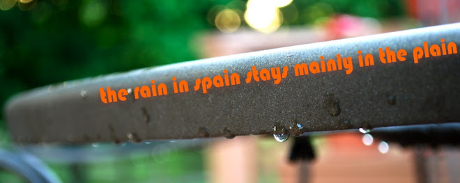 the rain in spain stays mainly on the plain