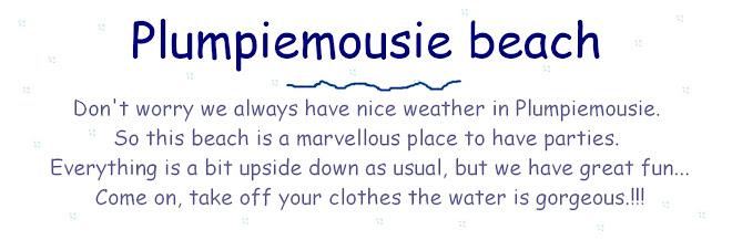 Plumpiemousie beach