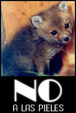 NO a las pieles!!