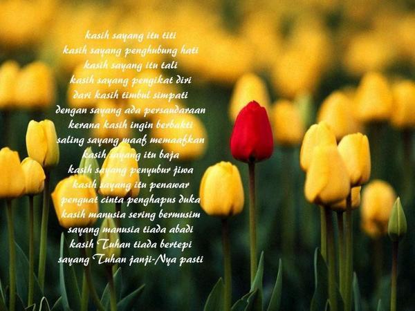 Berkasih sayang kerana ALLAH