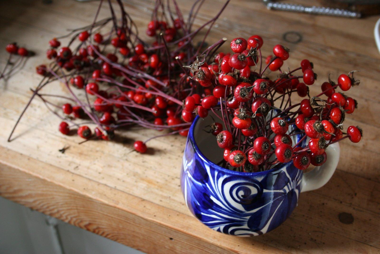 [berries]